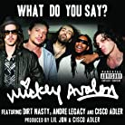 Mickey Avalon - What Do You Say? mp3 download