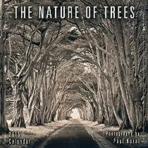 The Nature of Trees 2015 Mini Calendar