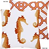 Olympic Seahorse Orange Collection - 20