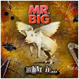 "What If... [Vinyl LP]von ""Mr. Big"""