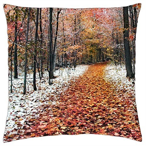 forest-in-two-seasons-winter-and-fall-throw-pillow-cover-case-18-x-18
