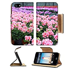 buy Apple Iphone 5 Iphone 5S Flip Case Greenhouse With Colorful Blooming Geranium Flowers Image 19723617 By Msd Customized Premium Deluxe Pu Leather Generation Accessories Hd Wifi Luxury Protector