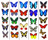 Temporary Butterfly Tattoos (Free Shipping) - 5 Sheets