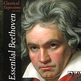 Symphony No. 4 in B-Flat Major, Op. 60: III. Allegro vivace