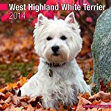 Avonside Publishing West Highland White Terrier 2014 (Calendar 2014)