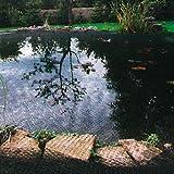 Siena Garden 543294