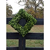 Mills Floral Boxwood Country Manor Square Wreath, 16-Inch