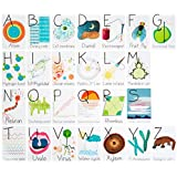 Nerdy Baby ABC Flashcards for Very Young Scientists