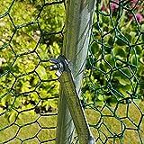 2m x 3m Walk In Hundehütte Pen Run Außen Übung Cage - CAGE 04 DE - Sonderangebot - SONDERPREIS !!! -