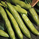 Heirloom Aquadulce Spanish Fava Bean Seed by Stonysoil Seed Company
