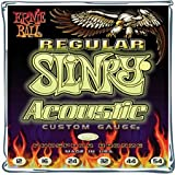 Ernie Ball Regular Slinky (0.12 - 0.54) Acoustic Guitar Strings