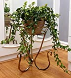 Classic Metal plant pot stand - Antique gold