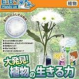 【科学工作】自然・植物 大発見! 植物の生きる力