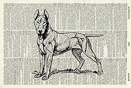 Bull terrier DOG ART PRINT - DOG LOVER\'S GIFT - DOG ART PRINT - VINTAGE ART - ANIMAL Art Print - Illustration - Dog Picture - Vintage Dictionary Art Print - Wall Hanging - Book Print 449D