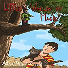 Little Worlds of Magic Audiobook by Mary T Kincaid Narrated by June Skye