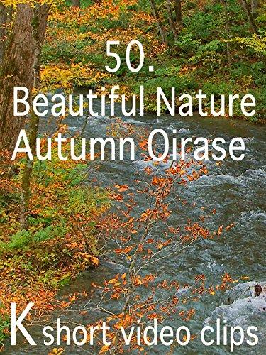 Clip: 50.Beautiful Nature--Autumn Oirase