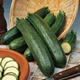 Suttons Seeds 187078 Courgette Black Beauty Organic Seed