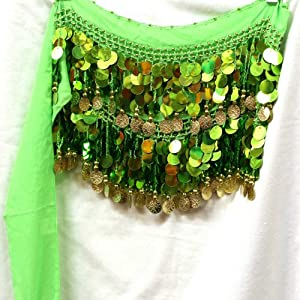 Belly Dance Dancing Chiffon Hip Scarf Skirt