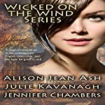 Wicked on the Wind Series: A Door in the Tree, The Witch in the Stones, A Storm Breaks | Alison Jean Ash,Julie Kavanagh,Jennifer Chambers