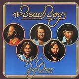 15 Big Ones [VINYL] The Beach Boys