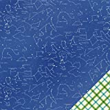 Pebbles Lakeside Stargaze 12x12 Scrapbook Paper