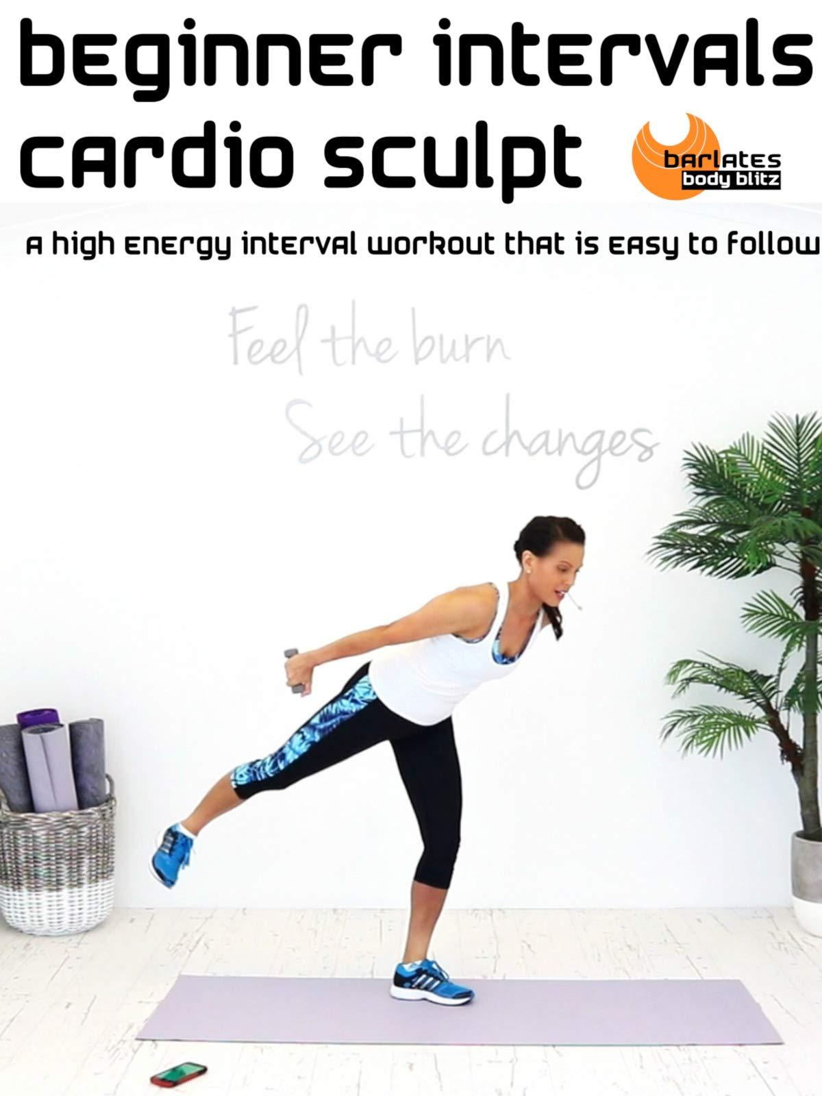 Barlates Body Blitz Beginner Intervals Cardio Sculpt on Amazon Prime Video UK