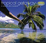 Tropical Getaway Wall Calendar (2015)