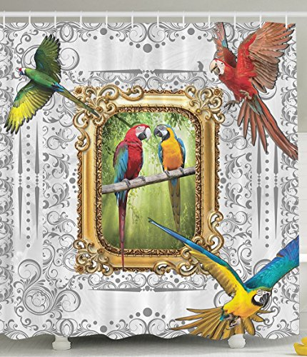 [Paintings Parrots Vintage Mirror Framed Art Paintings Decor Ideas French Country Design Home Bathroom Handmade Drawing Effect Baroque Ornaments Shower Curtain Red Blue Yellow Green Gold Gray] (Parrot Costume Ebay)
