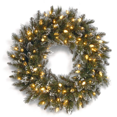 National Tree Gb3-319-24W-6 24-Inch Glittery Bristle Pine Wreath With 50 Soft White Led Lights