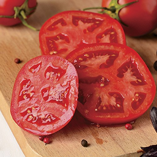 Better Bush Improved Hybrid Tomato 200 Seeds By Jays Seeds (Bush Tomatoes compare prices)