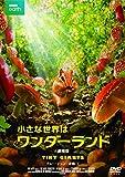 小さな世界はワンダーランド/劇場版[DVD]