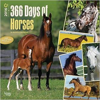 Horses, 366 Days of, 2016 Square 12x12