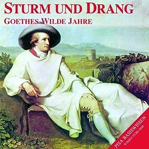 Sturm und Drang. Goethes wilde Jahre (PISA-Basiswissen Deutsch) Hörbuch