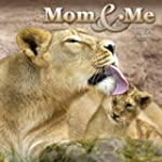 Mom and Me 2013 Wall Calendar