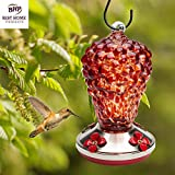 Hummingbird Feeder - HAND-BLOWN GLASS Feeders for Bird Lovers | Wild Raspberry | Enjoyable, Premium, Unique | Holds 16 ounces of nectar | Best Reviews | LOVE our Feeders or 100% MONEY BACK GUARANTEE (by Best Home Products)