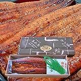 魚水島 炭火焼 鰻うなぎ蒲焼き ふっくらとろける極旨ウナギ 約30cm特々大 約200g×5尾 メガ盛り1kg 父の日ギフト/土用丑の日/お中元