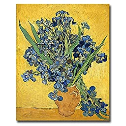 Irises, 1890 by Vincent Van Gogh Premium Gallery-Wrapped Canvas Giclee Art (Ready-to-Hang)