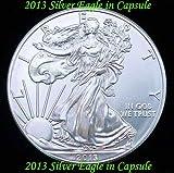 2013 Silver Eagle Dollar BU in Airtite Coin Capsule