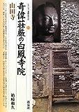 奇偉荘厳の白鳳寺院・山田寺 (シリーズ「遺跡を学ぶ」)