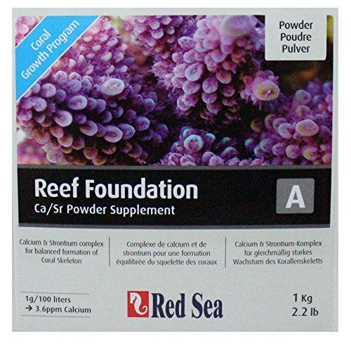 Red-Sea-Reef-Foundation-A-Complexe-de-Calcium-Strontium-pour-la-Formation-quilibre-du-Squelette-des-Coraux-1000-g