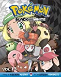 Pokémon Black and White, Vol. 13 (Pokemon)