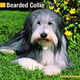 Avonside Publishing Bearded Collie 2014 (Calendar 2014)