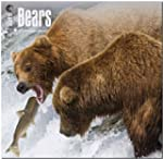 Bears 2015 - B�ren: Original BrownTro...