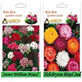 Alkarty Sweet William And Helichrysum Mixed Seeds Pack Of 20 (Winter)
