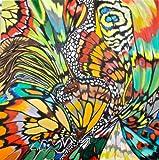 Farfalla (Mariposa)