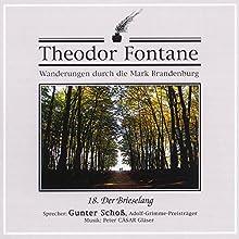 Der Brieselang (Wanderungen durch die Mark Brandenburg 18) Hörbuch von Theodor Fontane Gesprochen von: Gunter Schoß