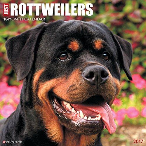 Just Rottweilers 2017 Wall Calendar (Dog Breed Calendars)