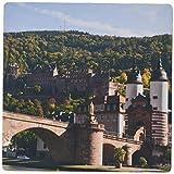 3dRose Old Bridge Neckar River Heidelberg Germany Eu10 Mde0254 Michael Defreitas Mouse Pad (mp_137211_1)