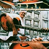 Cedars of Avalon by Coryell, Larry [Music CD]