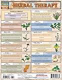 img - for Herbal Therapy (Quickstudy: Health) book / textbook / text book